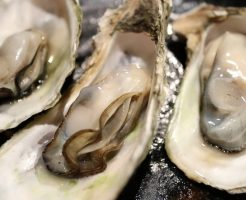 【ハーバード公衆衛生大学院】肉を食うより、精力アップさせるのは貝だった?!