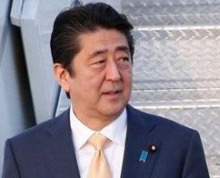 誰が国策を語るべきか|安倍晋三首相と菅義偉官房長官と大臣