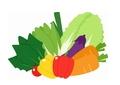 ビタミンやミネラルは積極的に摂取しましょう。ビタミンやミネラルは脂質やタンパク質の代謝に必要です
