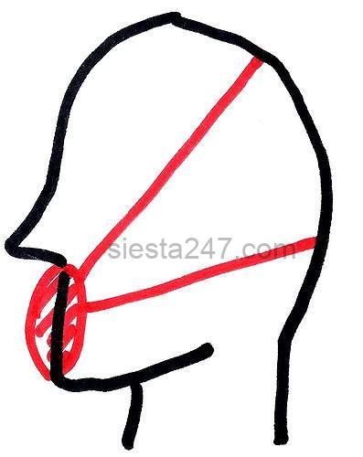 2本ゴムのN95マスクはこんな感じで使います