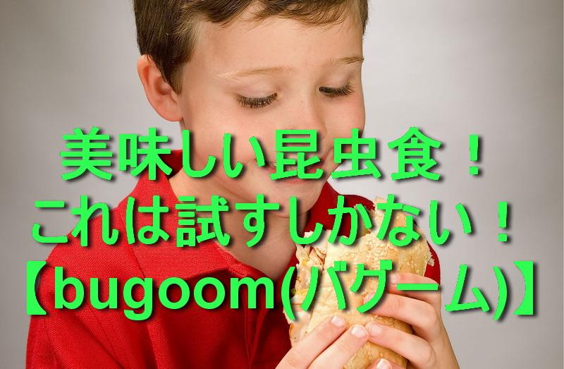 【美味しい昆虫食】これは試すしかない!【bugoom(バグーム)】